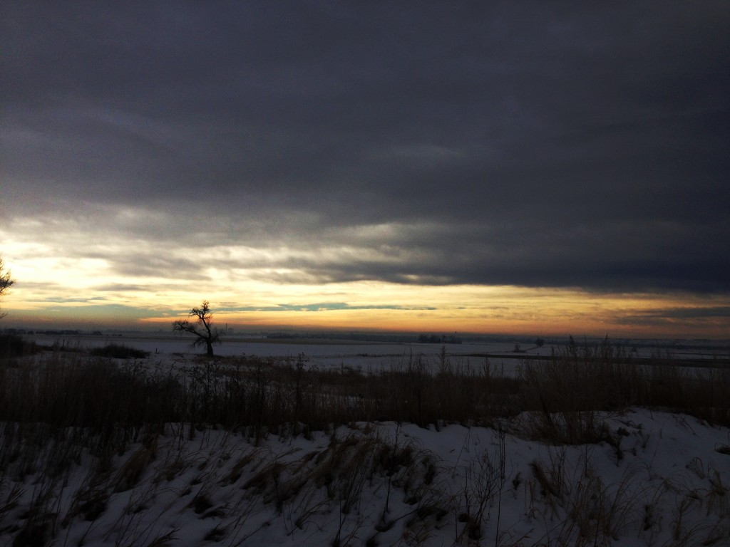Jan 10th, Morning Run
